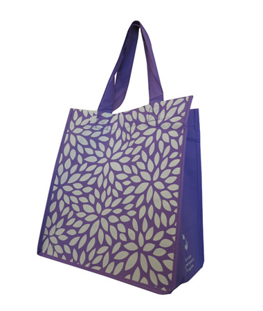 Polypropylene Bag with Gusset and Carry Handles