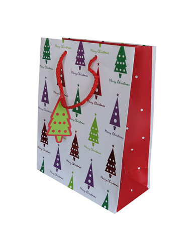 Decorated Gift Bag With Ribbon Handles