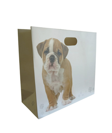 Luxury Paper Bag With Inset Carry Handles